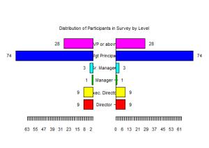 pyramid-of-participants-300x213